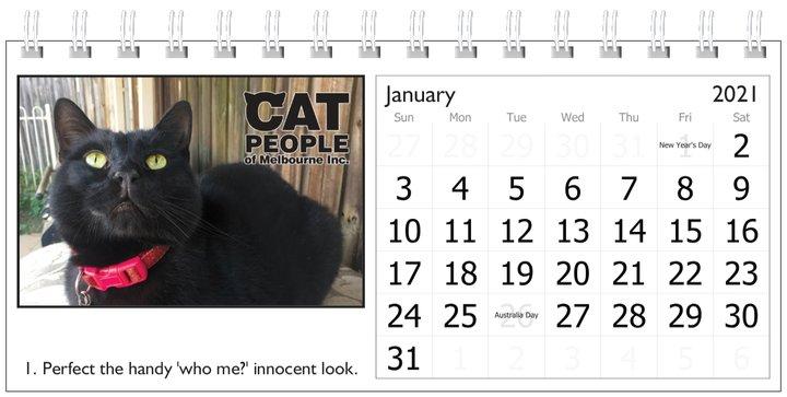UBC Calendar 2021 1 January