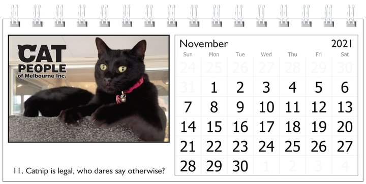 UBC Calendar 2021 11 November
