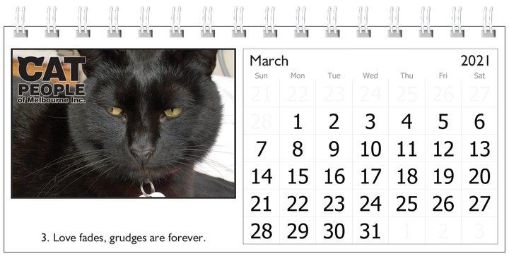 UBC Calendar 2021 3 March