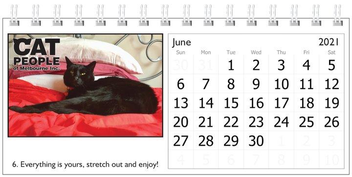 UBC Calendar 2021 6 June